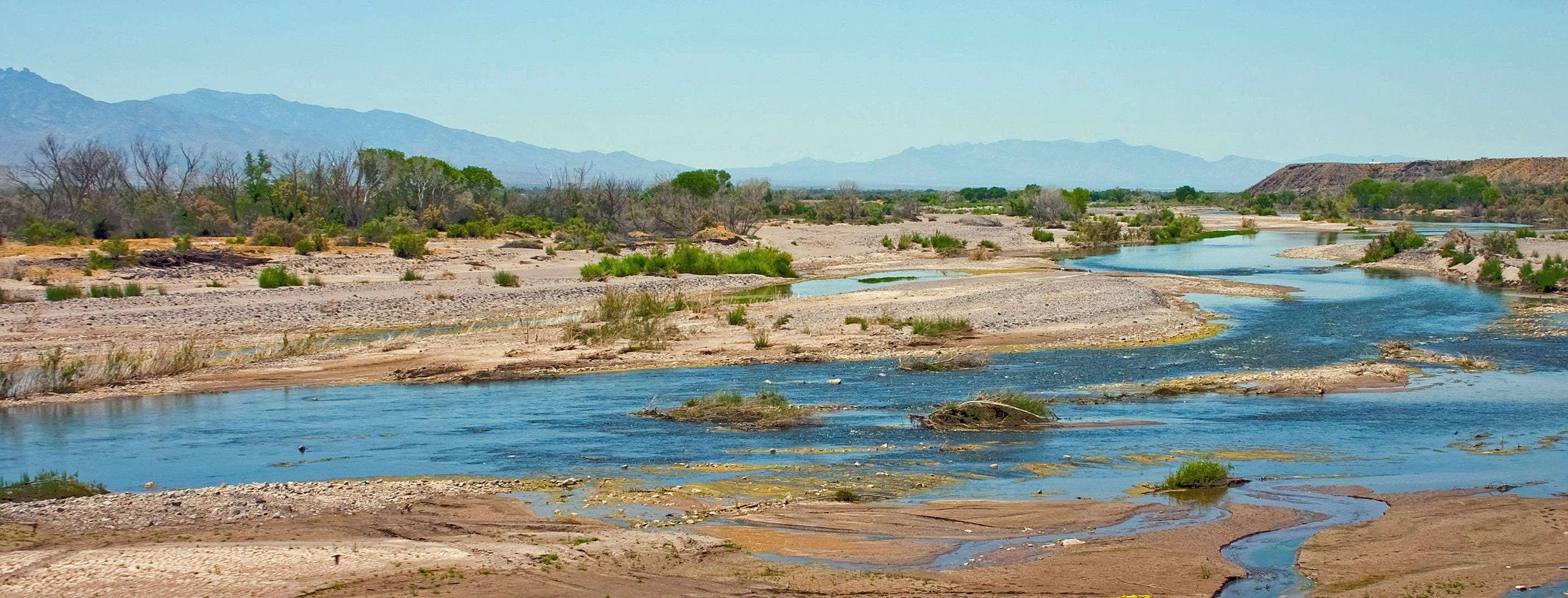 A sprawling view of the gila river and wild plantlife