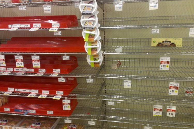 nearly empty store shelves